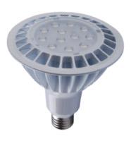 16W Par38 LED Bulb